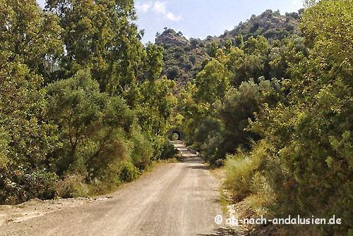 Radtour Via Verde Coripe